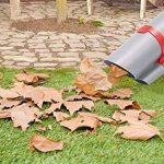 Aspirateur broyeur feuilles, votre comparatif TOP 2 image 2 produit