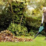 Aspirateur feuilles bosch => faites le bon choix TOP 3 image 4 produit