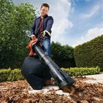 Black + Decker GW2810 Aspirateur de jardin électrique 3 en 1 2800 W de la marque Black & Decker image 2 produit