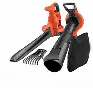 Black + Decker GW3050 Souffleur de feuilles de la marque Black & Decker image 0 produit