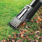 Black + Decker GW3050 Souffleur de feuilles de la marque Black & Decker image 5 produit