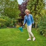 Bosch Set sculpte-haies et taille-herbes sans fil Isio set 2 lames + épandeur 1L 060083310N de la marque Bosch image 2 produit