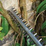 Bosch Taille-haies AHS 60-26 de 3,6 kg à lame de 60 cm coupant 26 mm 0600847H00 de la marque Bosch image 3 produit