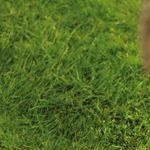 Bosch Taille-haies sans fil ASB 10,8 LI avec set de 2 lames et chargeur 0600856302 de la marque Bosch image 5 produit