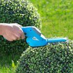 Cisaille électrique sans fil 2 en 1 pour bordures et buissons de la marque AGT image 1 produit