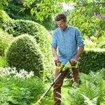 Coupe bordure jardin, notre comparatif TOP 6 image 1 produit