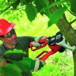 Coupe herbe sans fil bosch acheter les meilleurs produits TOP 10 image 3 produit
