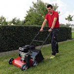 Démousseur pelouse : faire le bon choix TOP 6 image 6 produit
