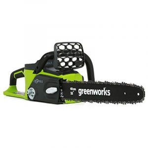 Greenworks Tools 20077 40cm Tronçonneuse sans fil 40V Lithium-ion (sans batterie ni chargeur) de la marque Greenworks Tools image 0 produit