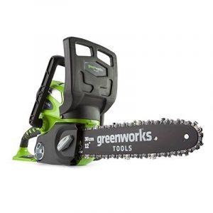 Greenworks Tools 20117UA Tronçonneuse sans fil lithium-ion avec batterie 2 Ah/chargeur 40 V 30 cm de la marque Greenworks Tools image 0 produit