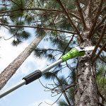 Greenworks Tools Élagueuse sur perche électrique 720W - 20147 de la marque Greenworks Tools image 2 produit