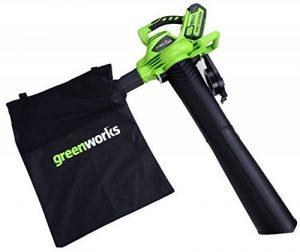 Greenworks Tools Souffleur/Aspirateur à feuilles sans fil 40V Lithium-ion (sans batterie ni chargeur) - 24227 de la marque Greenworks Tools image 0 produit