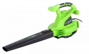 Greenworks Tools Souffleur aspiro-broyeur 2800W - 24077 de la marque Greenworks Tools image 0 produit