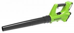 Greenworks Tools Souffleur axial sans fil 24V Lithium-ion avec batterie 2Ah et chargeur - 2402207UA de la marque Greenworks Tools image 0 produit