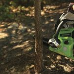 Greenworks Tools Tronçonneuse sans fil 25cm 24V Lithium-ion (sans batterie ni chargeur) - 2000007 de la marque Greenworks Tools image 5 produit