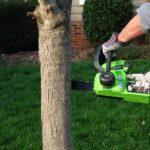 Greenworks Tools Tronçonneuse sans fil 30cm 40V Lithium-ion (sans batterie nichargeur) - 20117 de la marque Greenworks Tools image 2 produit