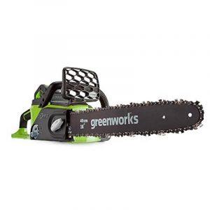 Greenworks Tools Tronçonneuse sans fil 40cm 40V Lithium-ion avec 2 batteries 2Ah et chargeur - 20077UC de la marque Greenworks Tools image 0 produit