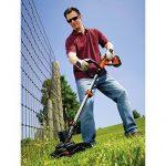 Jardinage coupe bordure faire des affaires TOP 2 image 2 produit