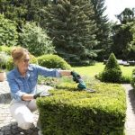 Jardinage coupe bordure faire des affaires TOP 4 image 2 produit