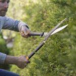 Jardinage taille haie : faites une affaire TOP 10 image 1 produit