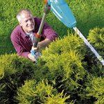Jardinage taille haie : faites une affaire TOP 12 image 2 produit