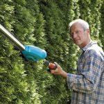 Jardinage taille haie : faites une affaire TOP 12 image 4 produit