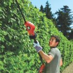 Jardinage taille haie : faites une affaire TOP 4 image 3 produit