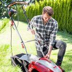 Scarificateur pelouse : trouver les meilleurs produits TOP 5 image 6 produit