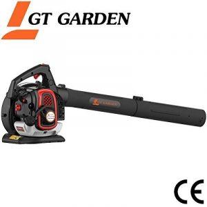Souffleur - aspirateur - broyeur thermique, 26 cm3 de la marque GT Garden image 0 produit