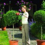 Taille buisson électrique - acheter les meilleurs modèles TOP 6 image 4 produit