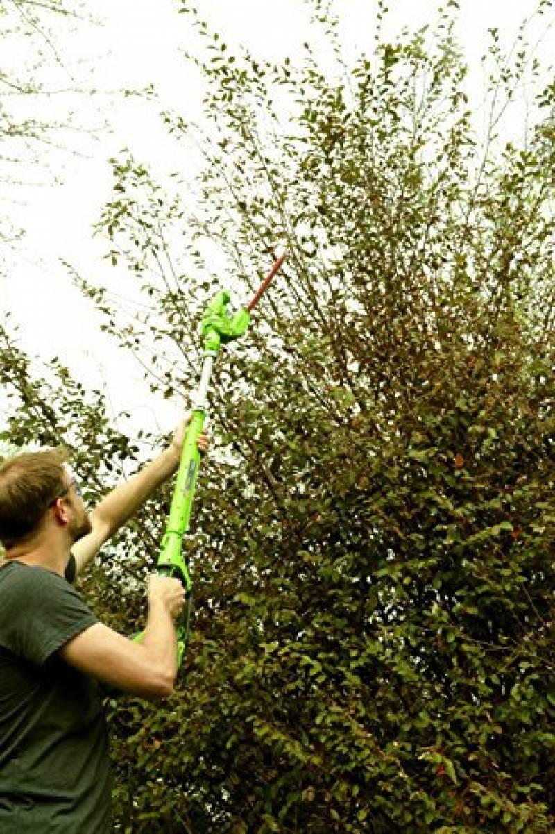 Taille haie perche sans fil comment acheter les meilleurs for Acheter un composteur de jardin