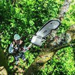 Taille haie sur perche bosch - top 5 TOP 0 image 2 produit