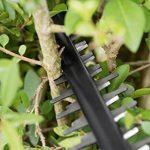 Taille haie thermique ou électrique => faire le bon choix TOP 7 image 3 produit