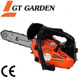 Tronçonneuse élagueuse thermique 25 cm3, 1.2 CV, guide 26 cm de la marque GT Garden image 0 produit