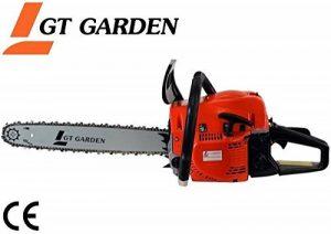 Tronçonneuse thermique 52 cm3, 3 CV, guide 45 cm, 2 chaînes de la marque GT Garden image 0 produit