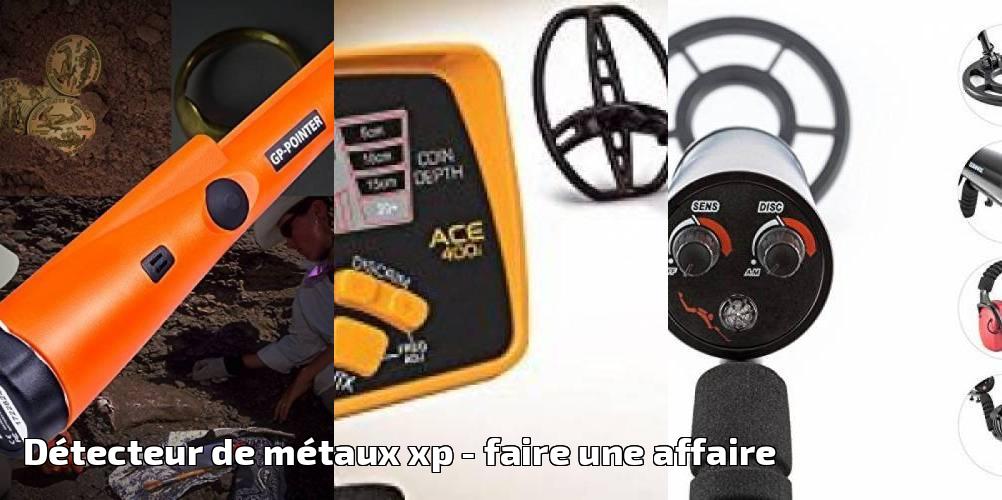 Xp Metal Detectors Disque 22,5 Cm Dd Avec Prot/Ã/¨ge Disque R/Ã/©glages Par Potentiometres Detecteur De Metaux Adx 150 Fr/Ã/©quence 4,6 Khz Identification Sonore Mono-Ton